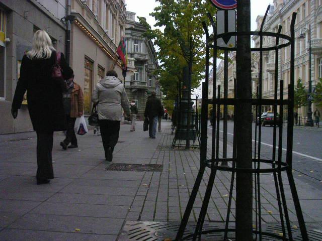 sxq-11-street.jpg
